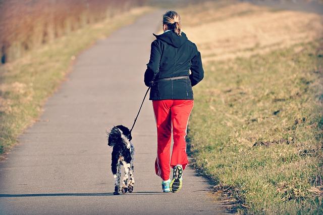 běhání se psem